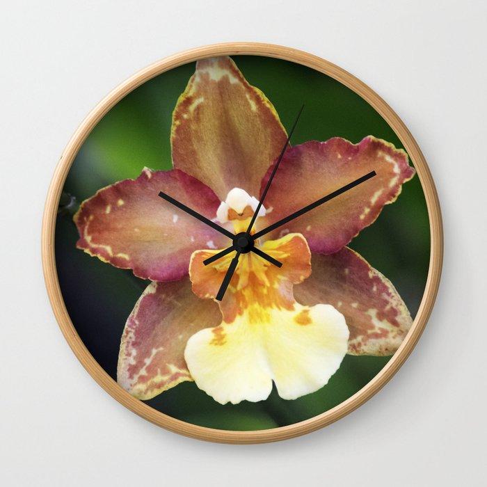 Longwood Gardens Orchid Extravaganza 73 Wall Clock