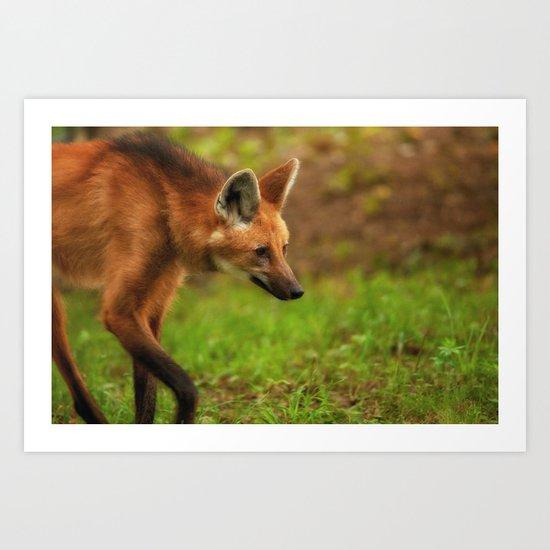 Wolf Strut Art Print