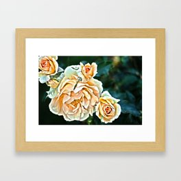 Pile of Roses Framed Art Print