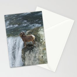 Big Horn Sheep & Rocky Mountain Waterfall Stationery Cards