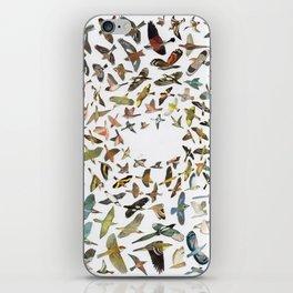 Bird, Birds, Birds iPhone Skin