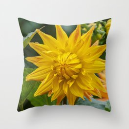 Amber Dahlia Throw Pillow