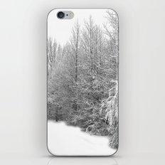 Snow 2 iPhone & iPod Skin