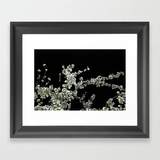Night Blossom Framed Art Print