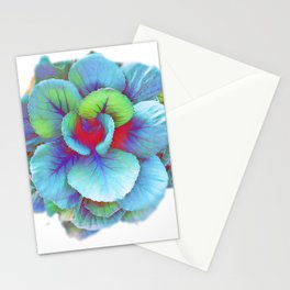 Flowering Kale Stationery Cards