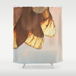 Cluster of lightened leaves Shower Curtain