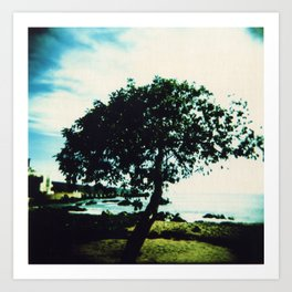 Lonely Tree Art Print