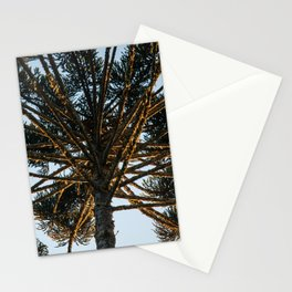 Araucaria branches II Stationery Cards