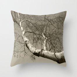 Birch tree #01 Throw Pillow