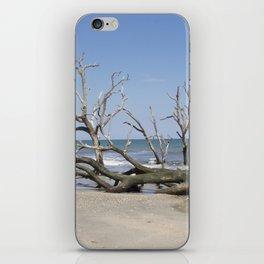 Drifwood iPhone Skin