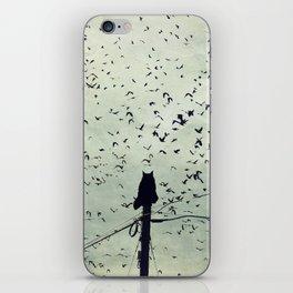 The Dreamer iPhone Skin