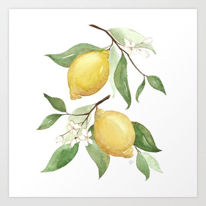 Watercolor Lemons I Canvas Art Print
