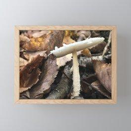 Flat Top Mushroom Framed Mini Art Print