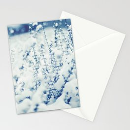 Blue Winter Stationery Cards