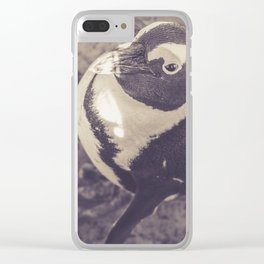Adorable African Penguin Series 3 of 4 Clear iPhone Case