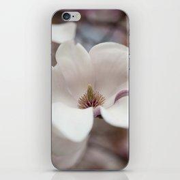Franklin Square iPhone Skin