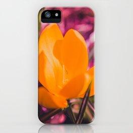 yellow crocus on pink iPhone Case