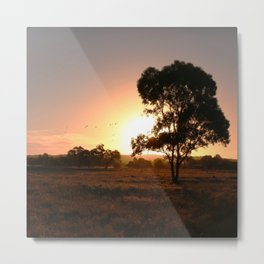 Evening Golden Landscape Metal Print