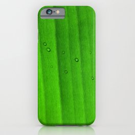 Drops on green leaf iPhone Case