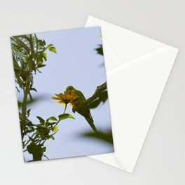 Birds from Pantanal Periquito-de-encontro-amarelo Stationery Cards