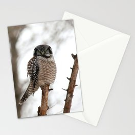 Aura Translator Stationery Cards