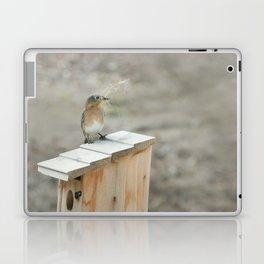 Build Your Nest Laptop & iPad Skin