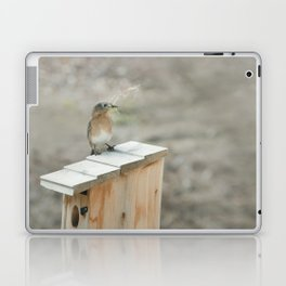 Build Your Nest Laptop & iPad Skin