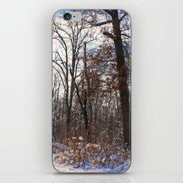 Shrouded Heart iPhone Skin