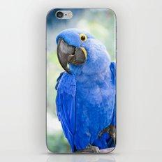 Beauty is an Enchanted Soul iPhone & iPod Skin