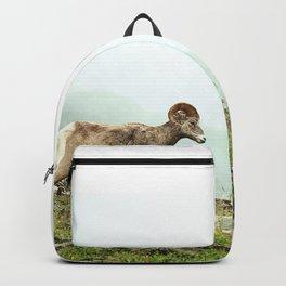 Mountain Ram Backpack