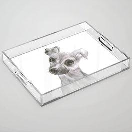 Chihuahua Dog Acrylic Tray