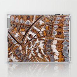 Pasha Butterfly Wing Laptop & iPad Skin