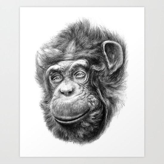 Wise Chimp SK067 Art Print