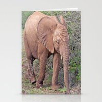 baby elephant Stationery Cards featuring Baby Elephant by Lynn Bolt