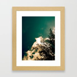 Tree in the Sky Framed Art Print