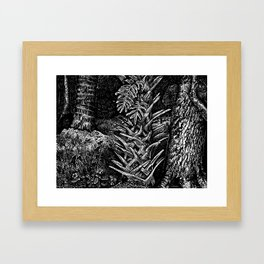Cabbage Palm w/Fern & Oak Framed Art Print
