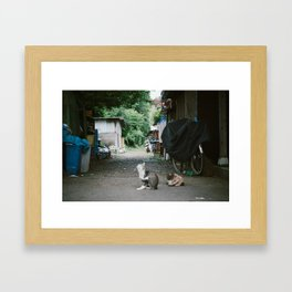 Japanese Alley Cats Framed Art Print