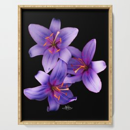 Beautiful Blue Ant Lilies, Flowers Scanography Serving Tray
