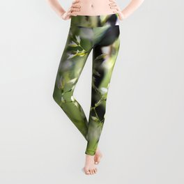 Blades Of Grass On Wire Fence Leggings