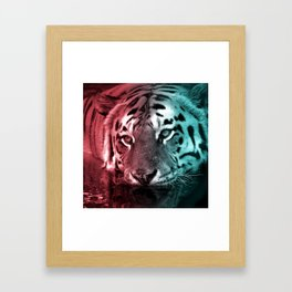 Pink & Teal Tiger in the Water Framed Art Print