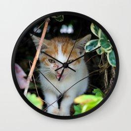 Little Lost Cat Wall Clock