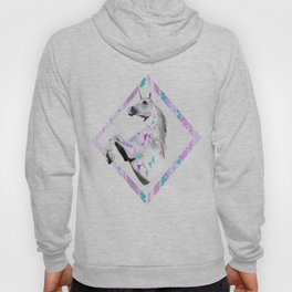 ▲TWIN SHADOW ▲by Vasare Nar and Kris Tate  Hoody