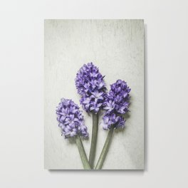 Three Lilac Hyacinth Metal Print