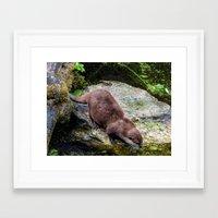 otter Framed Art Prints featuring Otter by Lynn Bolt