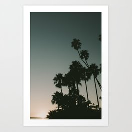 CALIFORINA DUSK Art Print