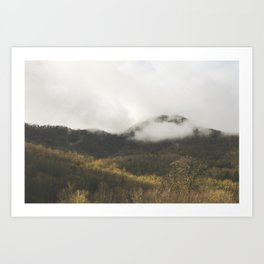 Appalachian Sunlight Art Print