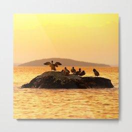 Summer Scene - Birds are resting on Stone - Sunset Sky #decor #society6 #buyart Metal Print