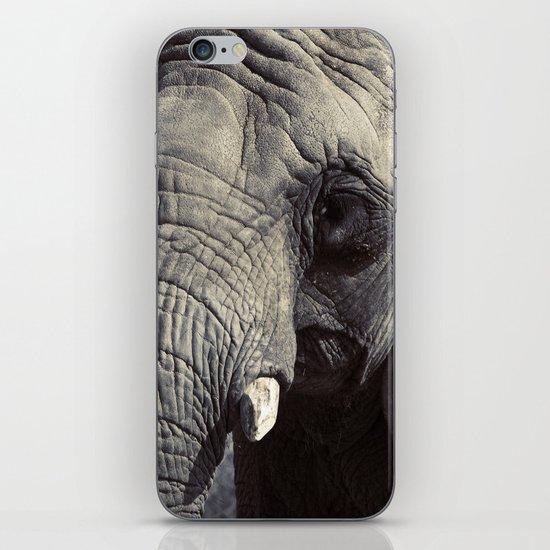 ELEPHANT OH MY! iPhone Skin