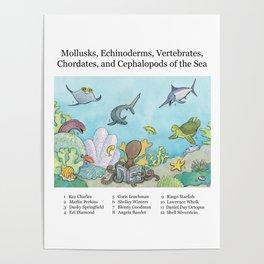 Go Fish! Poster