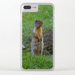 Columbian ground squirrels in Jasper National Park Clear iPhone Case